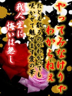 画像Ⅲ(ヤンキー画像、友情画像)
